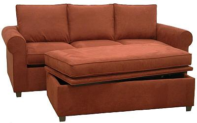 Mark's Custom Sleeper Sofa and Storage Ottoman